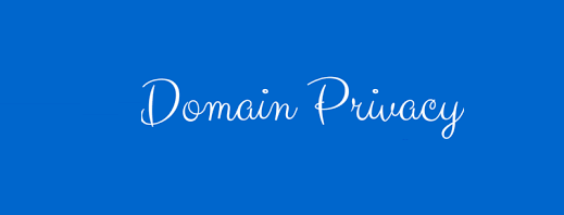 What Is Domain Privacy Protection? Why Is It Important?
